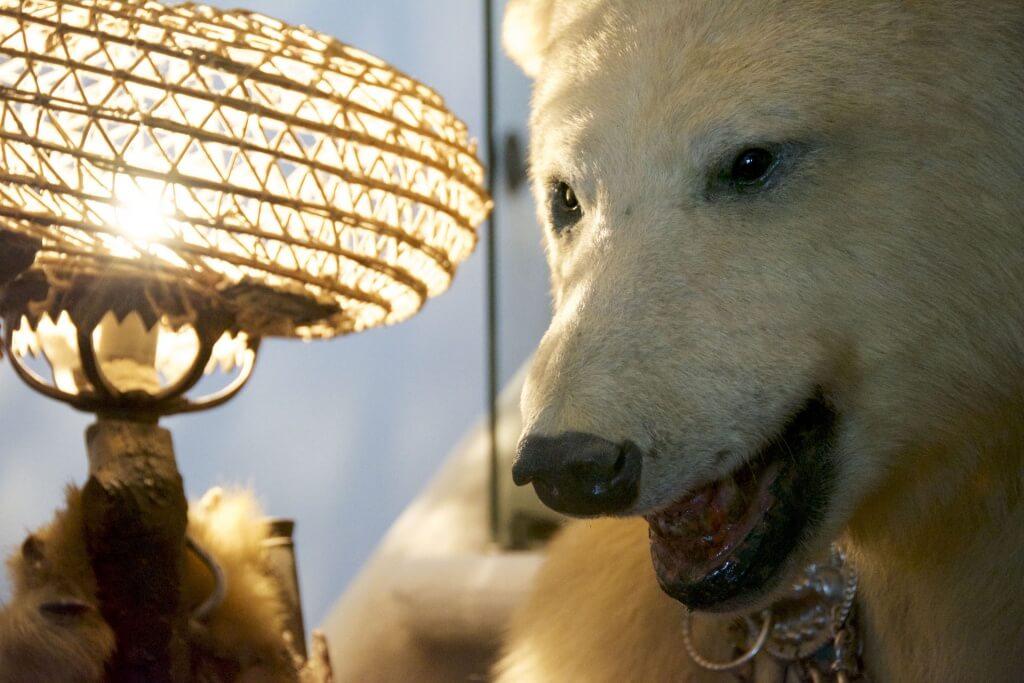 Bear lamp tho fam